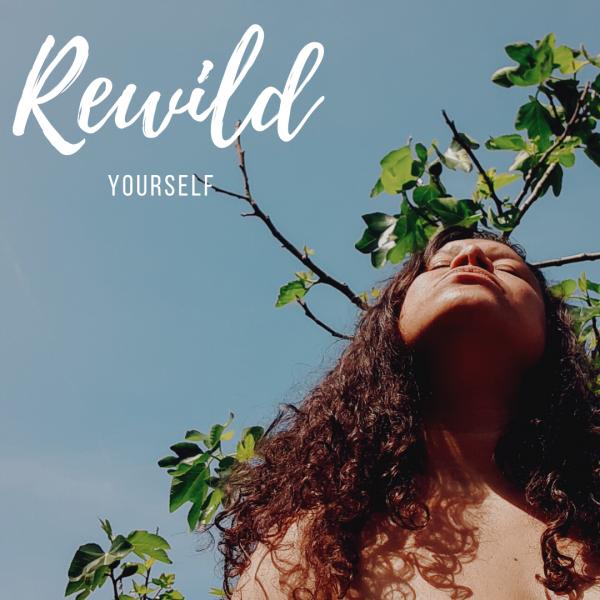 Rewild(1)